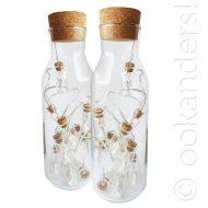 Bottle lighs